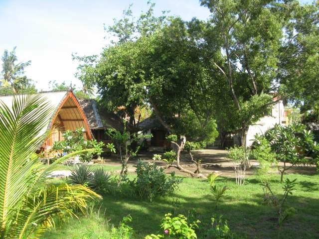 Внутренний дворик гостевого дома Safari утром