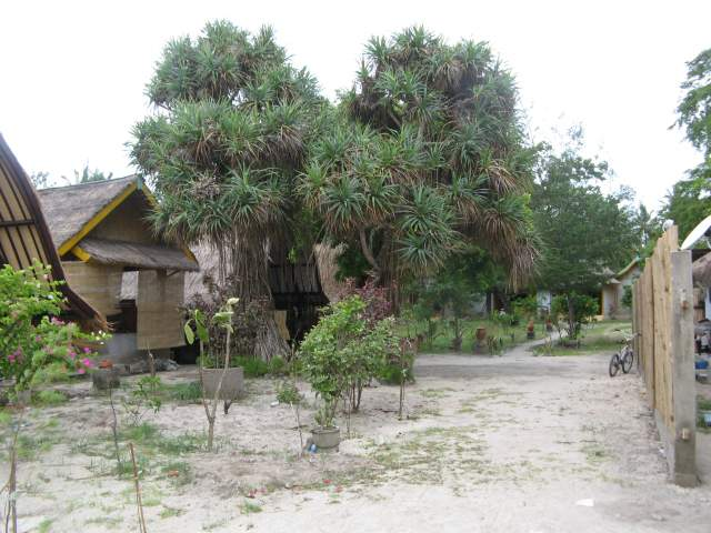 Гестхаусы возле Бунги
