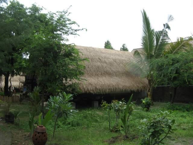 Внутренний дворик Safari утром, вид вправо, там теперь стал прятаться Ящер Пернатый