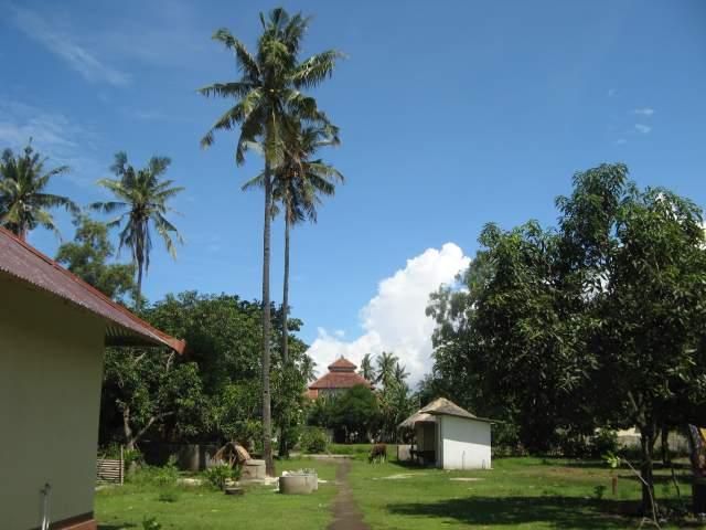 В центре острова недалеко от мечети