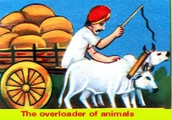 the overloader of animals