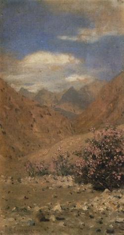 Розы в Ладаке. 1874-1876