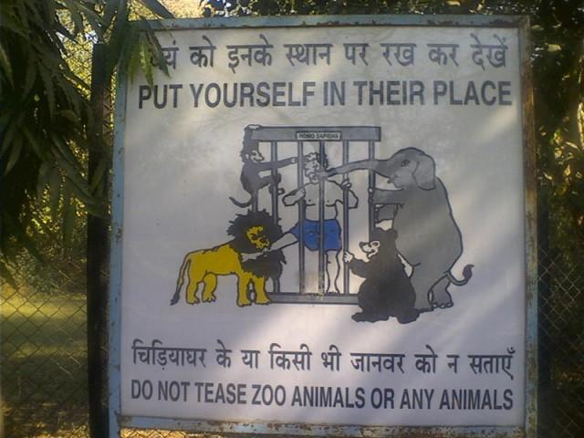 - вот такие угрозы в делийском зоопарке...