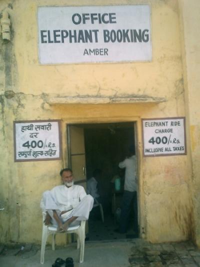 - джайпур, бронируйте наших слонов!