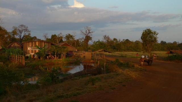 камбоджийская пастораль