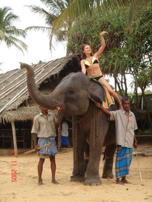 На слоне по пляжу...