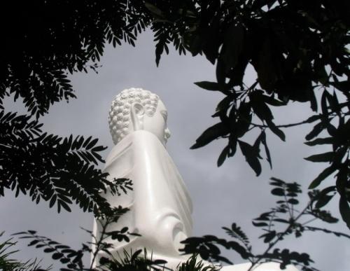 НЧ, Будда на цветке лотоса