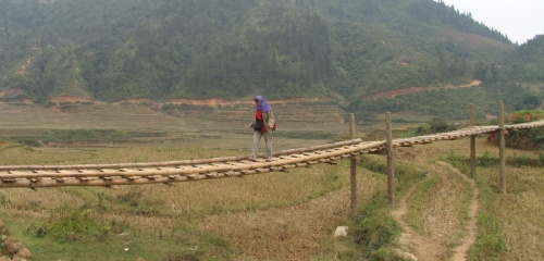 дорога над рисом