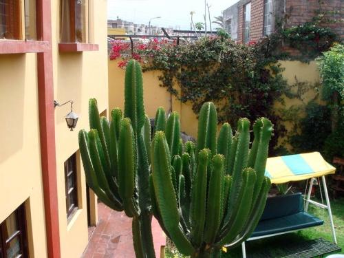 из окна моей гостиницы