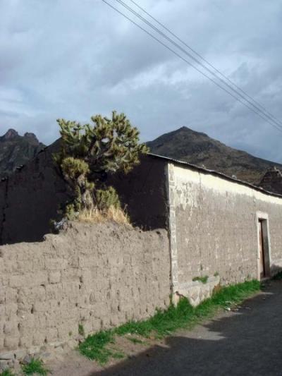 улочки Чивая