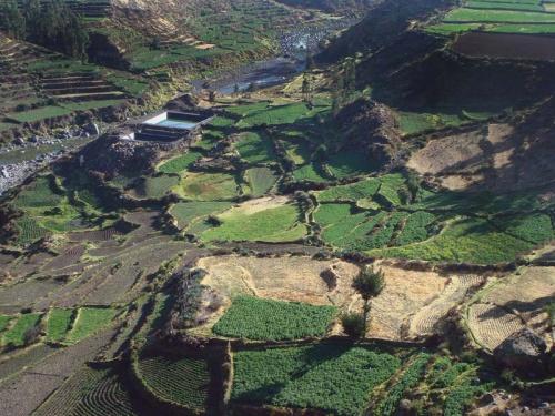 высокогорные поля: система орошения