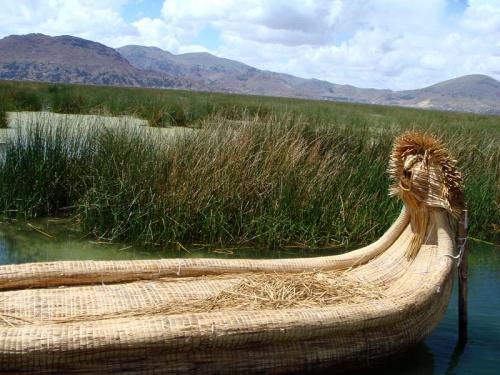 из этого тростника индейцы делают такие лодки