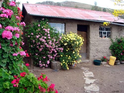 в этом домике на острове я провела ночь в семье перуанской крестьянки и ее детей