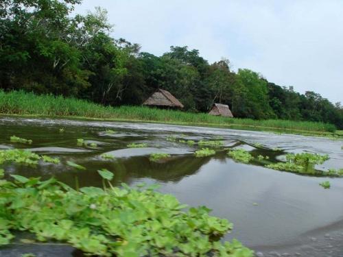амазонские деревеньки