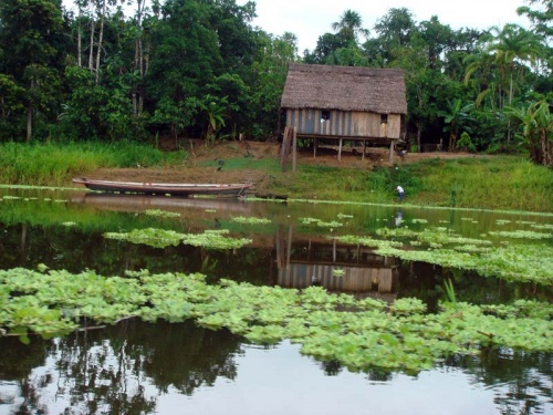 снова деревенька - в таких домиках на сваях там живут...