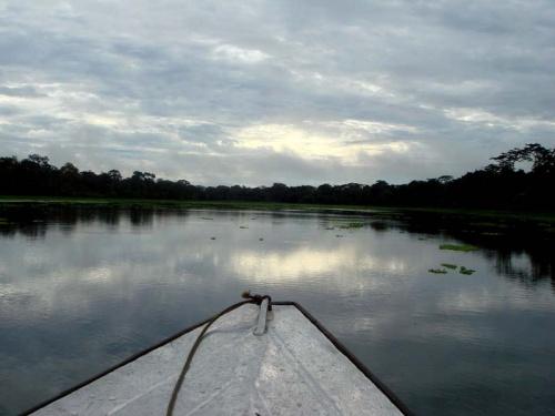 рассвет на Амазонке