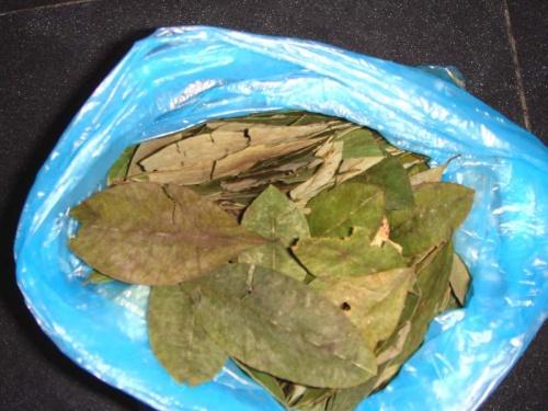 ...и листья коки :)