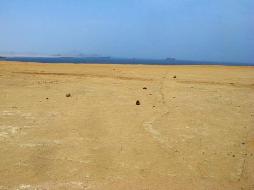 синий и желтый, пустыня и океан - цвета Паракаса