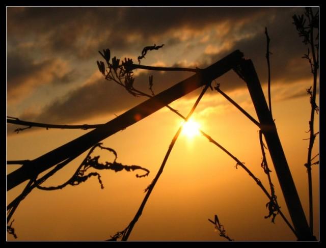 Закаты в Касоли