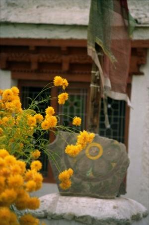 цветы для Маши в д.р.Фото badguest.