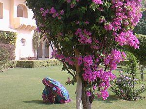 в саду дворца