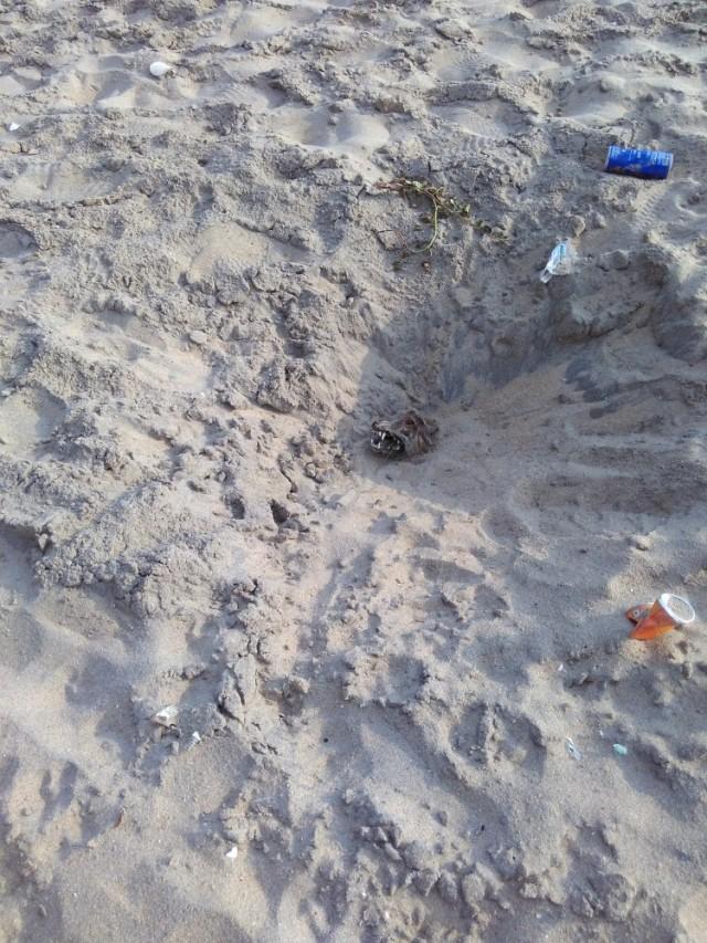 Могила неизвестного полкана на пляже.
