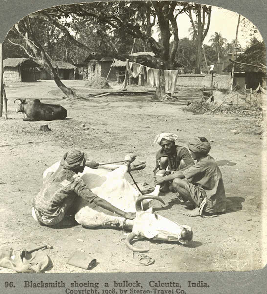 http://www.indostan.guru/forum/foto-video/4821/90962_1_o.jpg