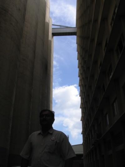 prima гигантская мучная фабрика