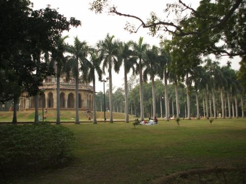 Пальмы-колонны