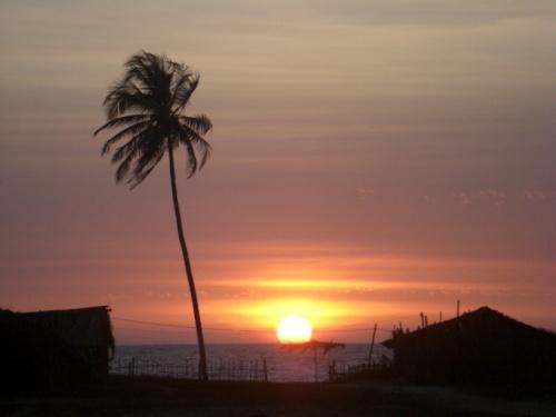 Бенаулим. Вид на закат от нашей калитки.