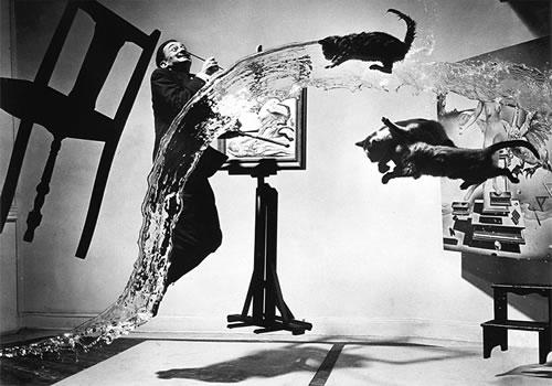 сюрреализм и злые коты