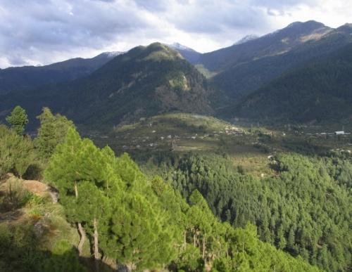 долина Куллу, Pangau gompa