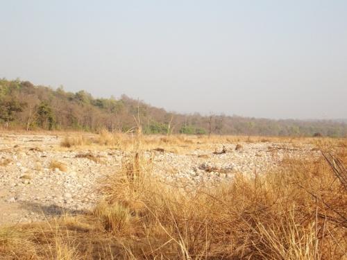 русло муссонной реки в апреле