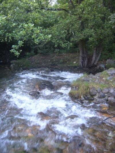 Нарзановая речка