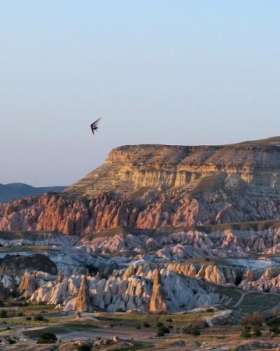 И мою любимую птичку мы там видели на закате :)