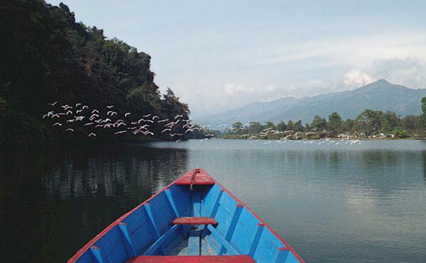 Pokhara 97