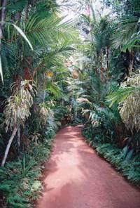 """...если дороги, то в мир волшебный, например, на Ланку, в """"Сад вздохов"""" и чтоб было, о чем вздыхать...или с кем :-)"""