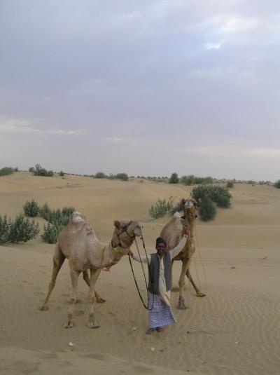 """""""я и мои верблюды"""""""