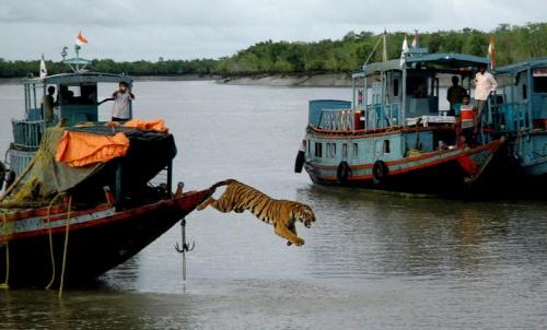HO/AFP/Getty Images
