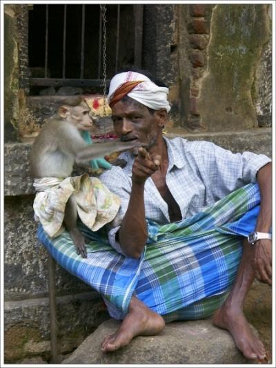 Хозяин и его обезьяна