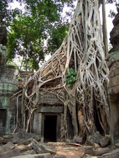 Камбоджа, храм Ват Пром
