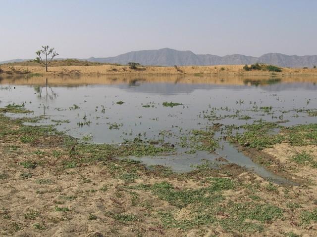 озерцо  посреди пустыни