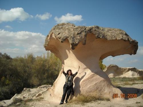 Тот самый гриб-символ Гюльшехира