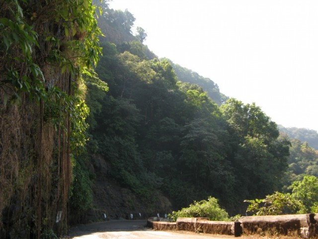 Дорога в Гатах