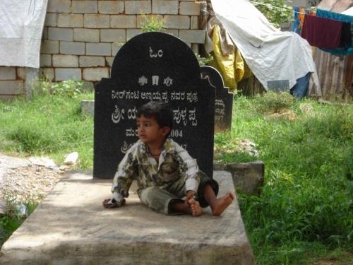Между нашими домами затесалось маленькое кладбище.На могилах постоянно кто-нибудь отдыхает .