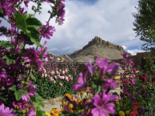 shegar dzong fort