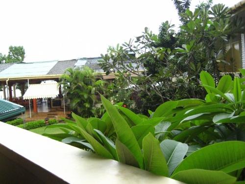 вид с нашего балкона на ресторан
