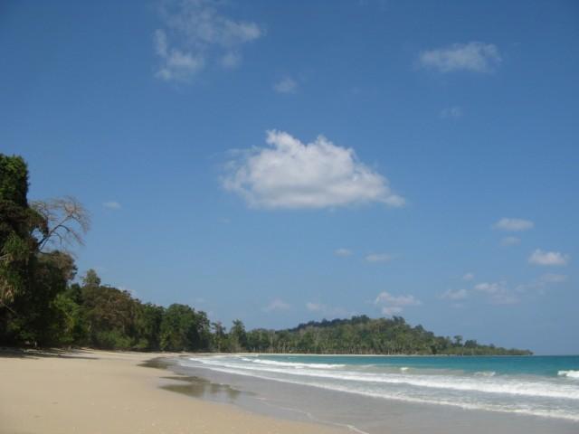 Lalagi Bay. Слева в подлеске кемпинг. Прямо в кокосняке несколько домов работников Agriculture Dept. У них много свежих кокосов
