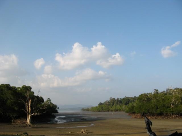 Мангровый залив в бухточке на севере острова