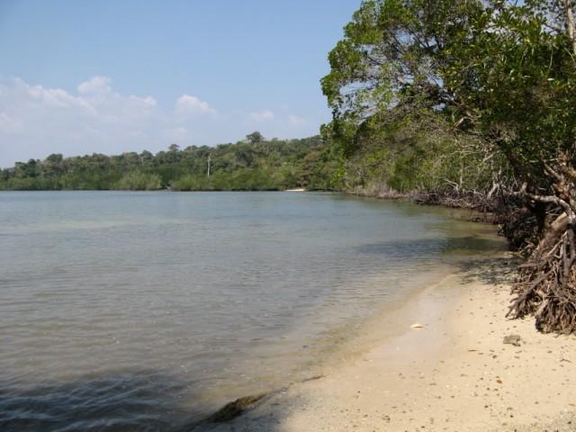 Микропляжик на севере острова. Вокруг - мангровые заросли